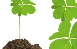 La chance peut se provoquer, ce stage est le fruit de toute l'expérience d'iRiS dans la science de l'intuition
