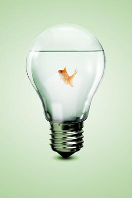 Concours 'Exprimez votre intuition' - Comment participer
