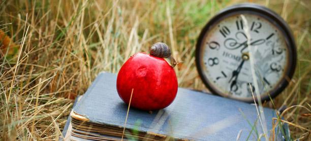 Peut-on apprendre à ralentir à temps ? - Iris, école de l'intuition
