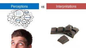 Formation en ligne pour développer son intuition - Perceptions vs Interprétations - iRiS, école de l'intuition